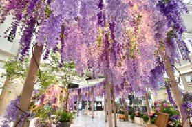 台北101打造紫色秘境花園 逛街同時美拍爆棚紫藤花