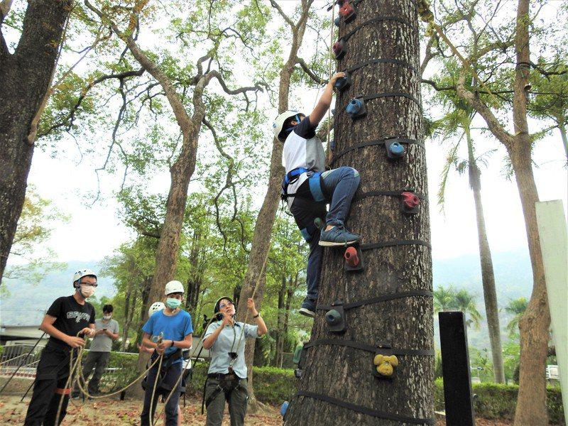 南投縣長福國小學生挑戰猴爬樹,孩子得靠自己抓握上樹。記者賴香珊/攝影