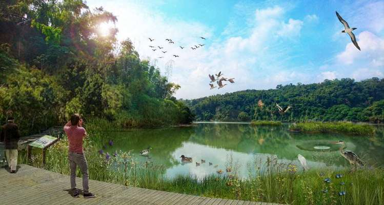 「水鳥景觀區」模擬圖。圖/高雄市政府觀光局|高雄旅遊網