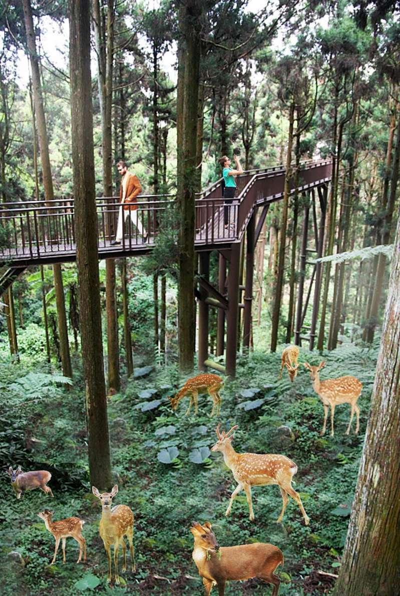 「原生動物區」模擬圖。圖/高雄市政府觀光局|高雄旅遊網