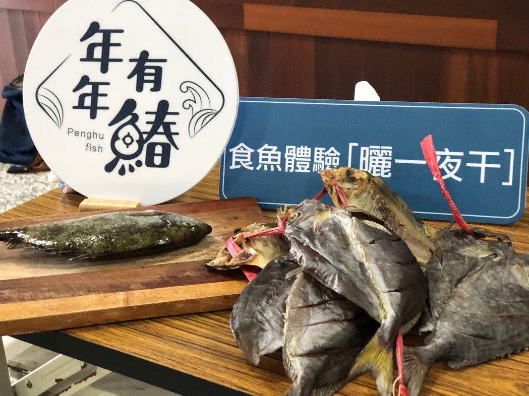 台灣看不到的烏尾鮗和臭肚魚卻是澎湖人日常魚種,不同的魚也有澎湖當地的獨門料理方式...
