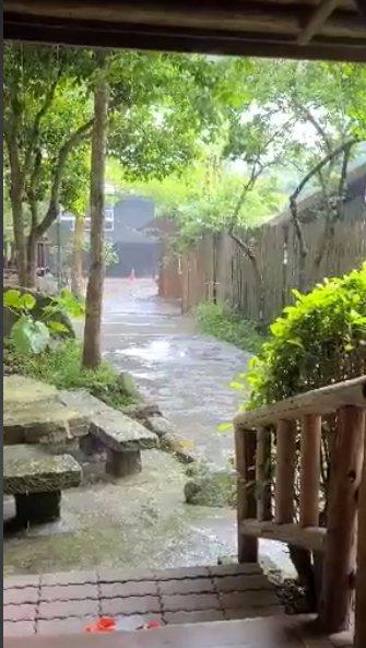 嘉義縣阿里山區久旱逢甘霖,民眾急忙用手機記錄這歷史性一刻。圖/劉星雨提供