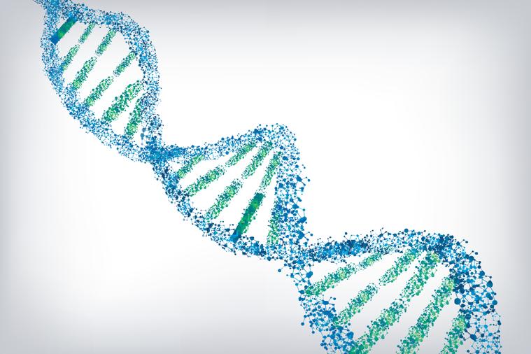 氮芥的作用是找出核苷酸鳥嘌呤,然後把它與配對的核苷酸胞嘧啶之間的輕輕一握改為「緊...