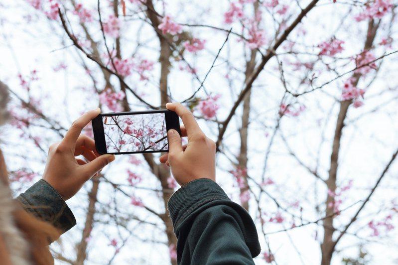 日本網友指出,雙手放在手機兩側的拍照方式,多半是年齡比較年長、較常接觸相機的人。示意圖/Ingimage
