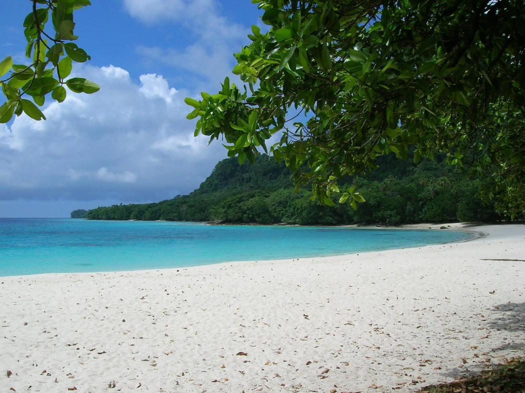南太平洋島國萬那杜日前一具沖上該國海岸的男屍經查驗後,於19日證實感染新冠病毒,...