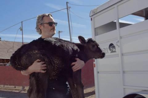 獲選奧斯卡最佳紀錄片15強的「農場我的家」(Gunda),劇情透過1隻豬、1隻獨腳雞和2隻牛的農場日常,訴說一個深刻感人的故事。該片除獲美國爛番茄電影網98%的超高好評,就連「小丑」奧斯卡影帝瓦昆菲...