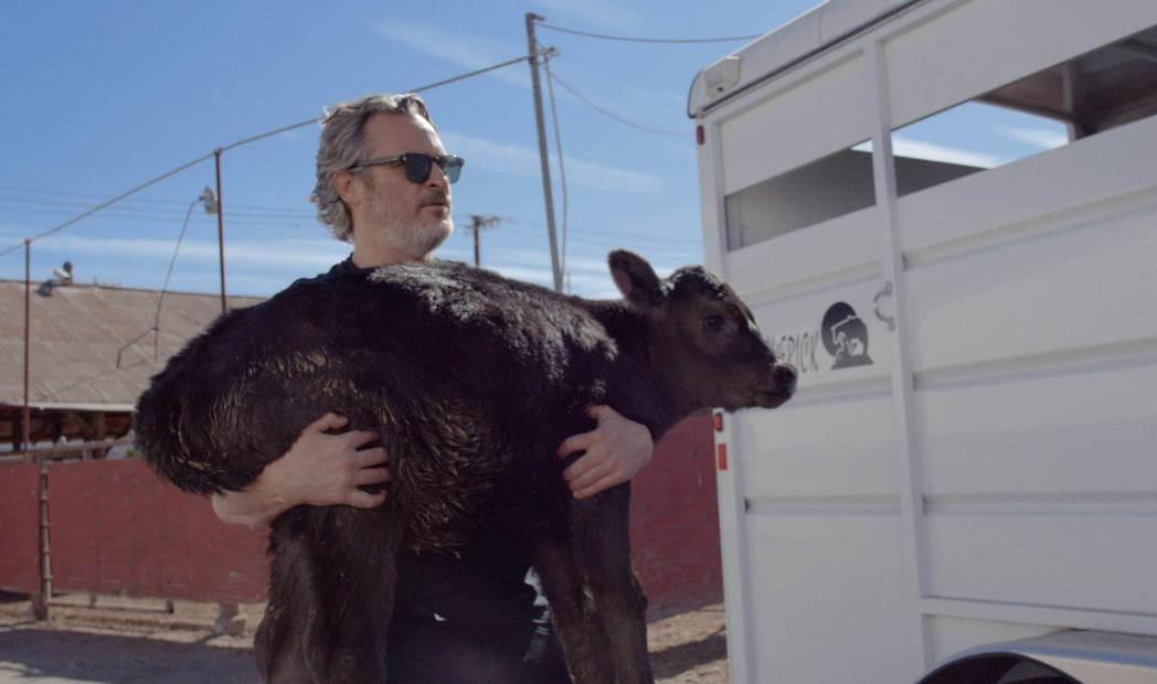 瓦昆菲尼克斯為「農場我的家」感動。圖/海鵬提供