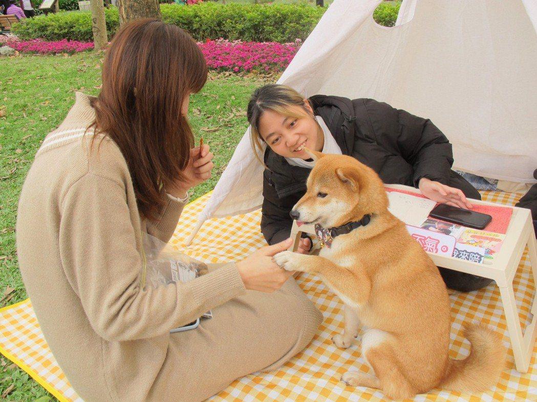 寵物溝通活動照。世新公廣/提供