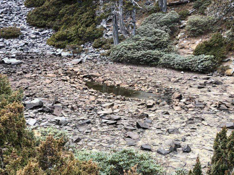 高山目前也缺水,雪山翠池僅剩一灘淺水。圖/雪霸國家公園管理處保育志工提供