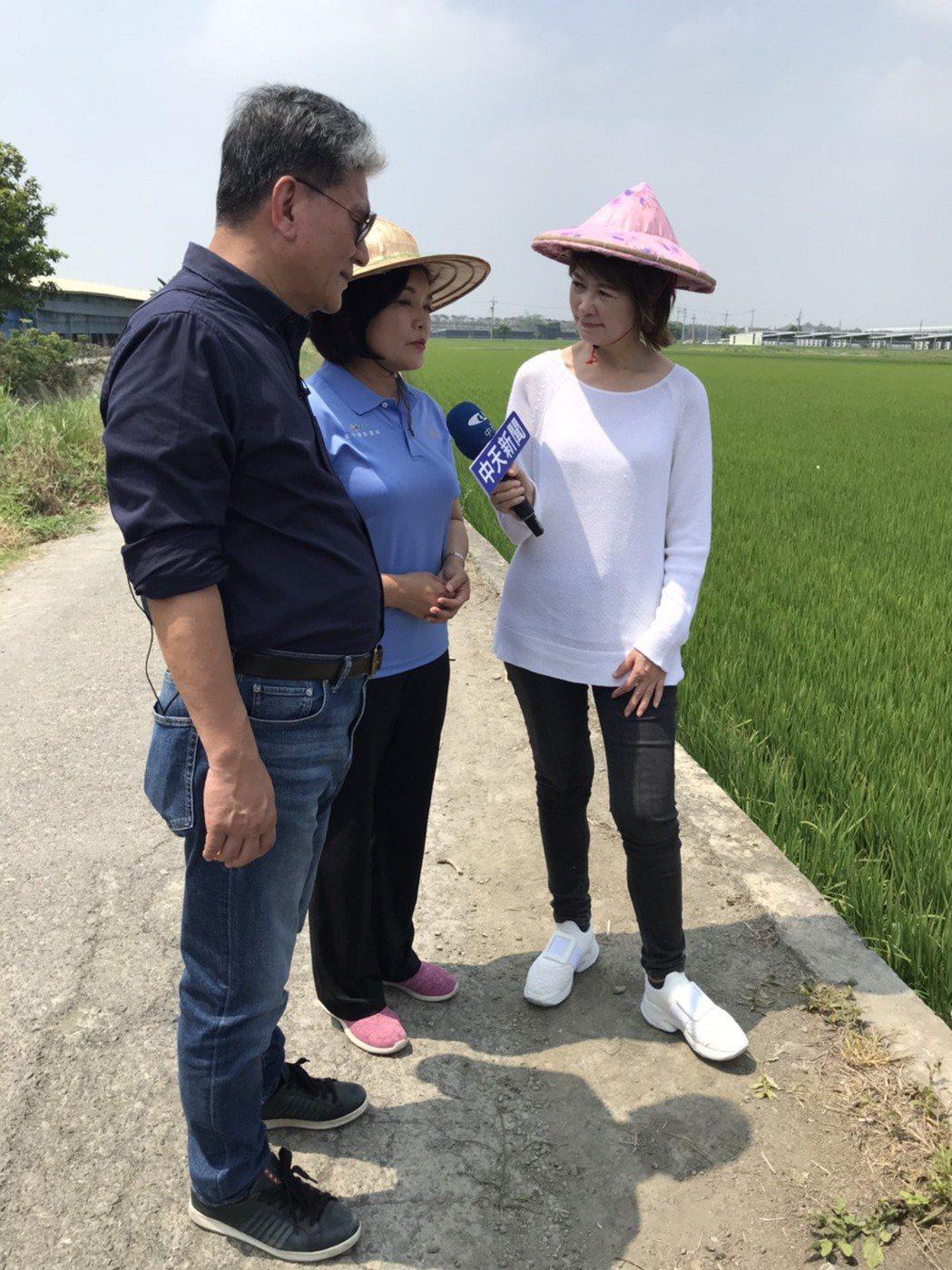 雲林縣長張麗善(中)接受「中天辣晚報」訪問。圖/中天電視提供