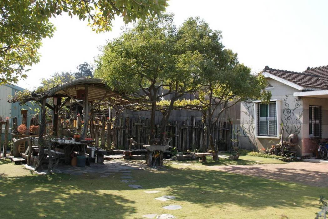 魏進東享受在院子裡付出的過程和時間。 圖/魏進東提供
