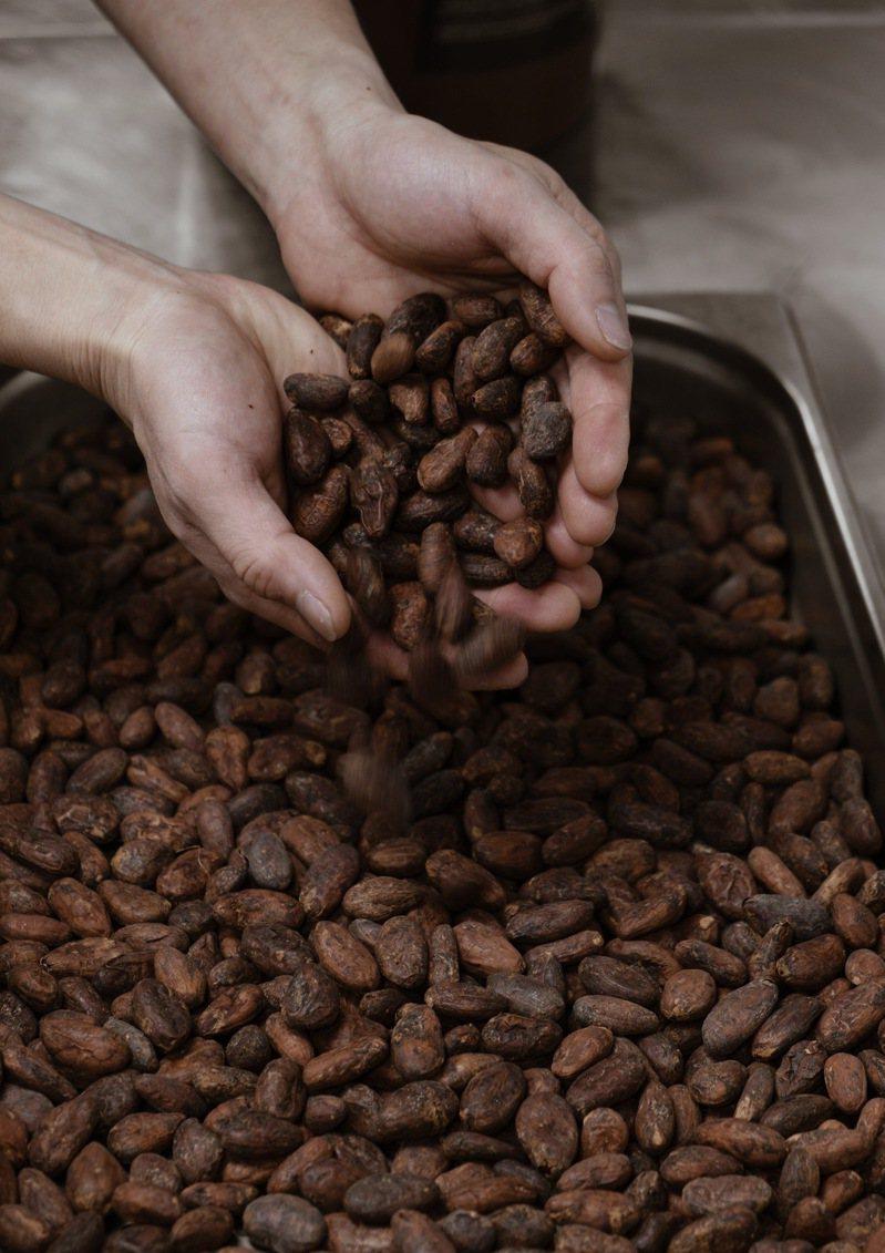 巧克力揀選,展現職人精神。圖/Coquology提供