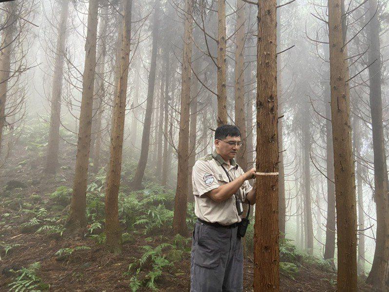 林務局新竹林區管理處余智賢,獲選為今年全國模範勞工。圖/新竹市政府提供