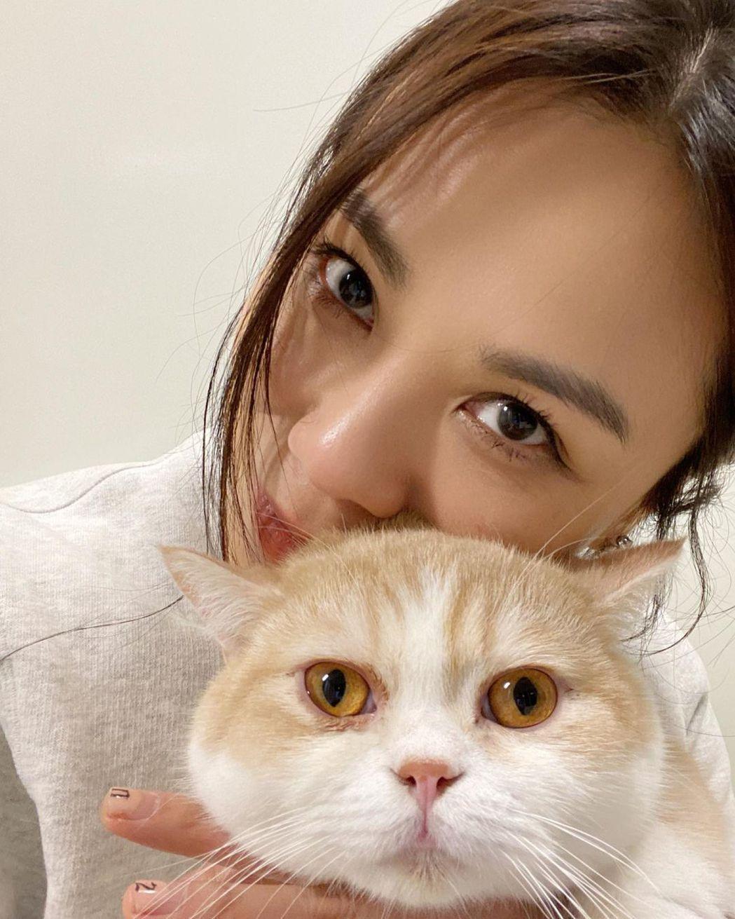 蔡健雅很常在社群網站分享跟愛貓的互動。圖/摘自IG