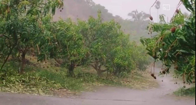 台南市山區今天下午有對流降雨,落在曾文水庫附近。圖/擷取自台南市長黃偉哲臉書