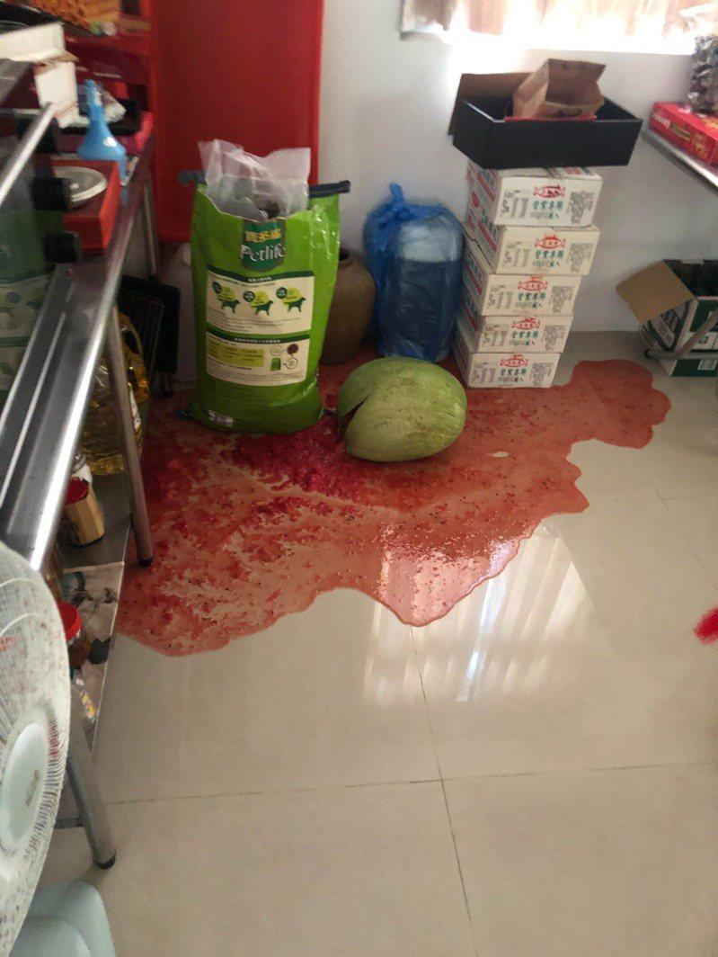 男網友從好市多買了一顆大西瓜,沒想到西瓜卻突然自爆。圖/翻攝自PTT