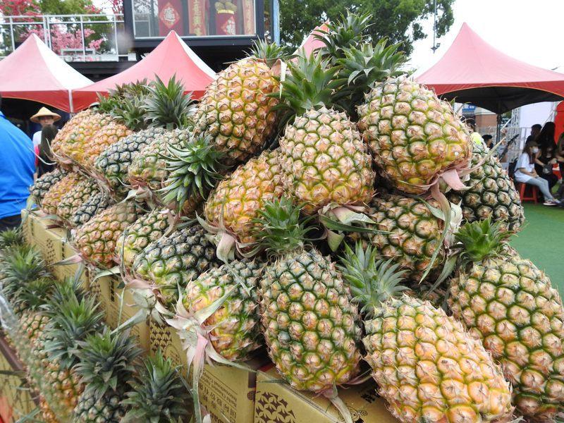中國暫停進口台灣鳳梨,但農委會主委陳吉仲今表示,產地價格比2年前更好,且已外銷1.5萬噸。記者賴香珊/攝影