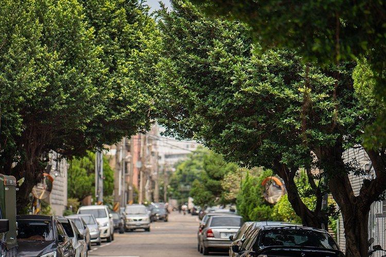 「榮華特區」自然綠意的樂活環境,是天母人心目中的夢幻桃花源。(圖/業者提供)