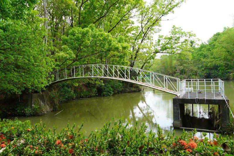 中興大學新化林場沖瀜池是早期闢建的農塘,乾旱期仍蓄水滿滿。記者吳淑玲/攝影