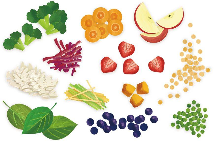 衛生福利部建議三餐熱量的來源50~60%來自於醣類;30% 以下來自於油脂類;1...