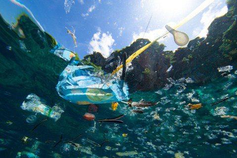 鄭明修數十年來看盡世界各地海洋變遷,痛心指出海洋垃圾為當前最嚴重的環境問題。圖片...