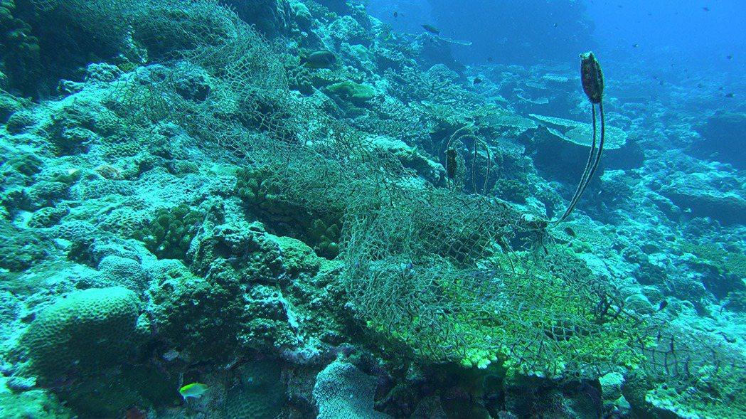 全球海底有 10 萬張以上廢棄漁網,常纏繞在珊瑚礁盤上、纏住許多海洋生物,破壞生...