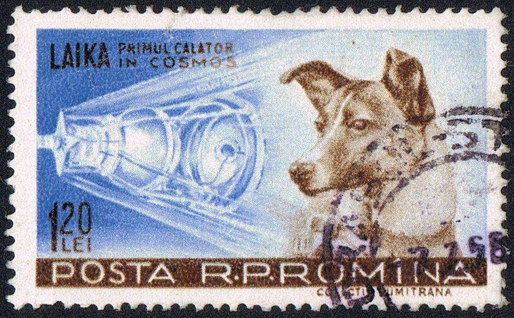 為了紀念萊卡,後世有諸多相關的紀念活動和紀念品。 圖為1959年印有萊卡肖像的郵...