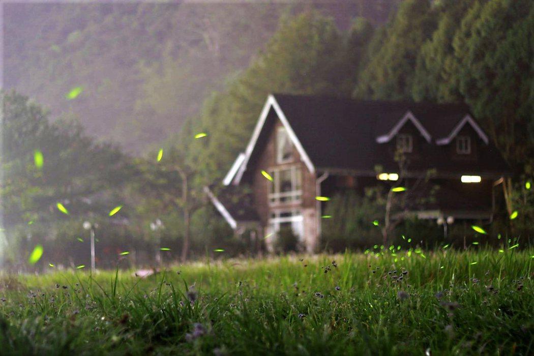 晶園休閒渡假村夜拍火金姑,唯美景觀令人驚豔。(攝影者:旅人狂潮@艾倫的旅遊札記)