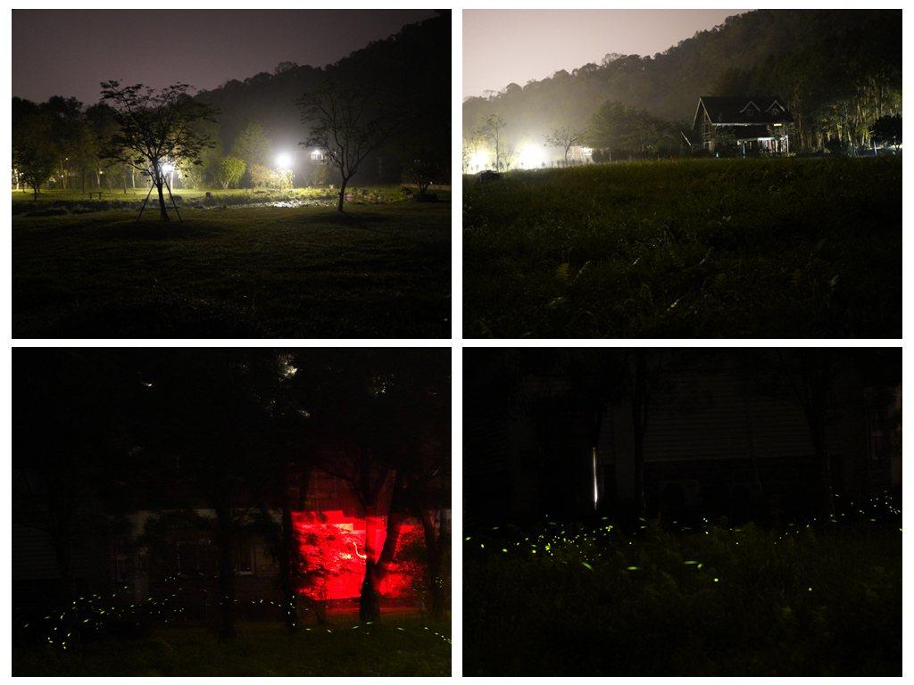 日月潭晶園休閒渡假村被譽為構圖最美的賞螢攝影地
