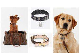 時尚小萌寵來了!FENDI、LV、DIOR的狗狗配件 也太可愛了吧