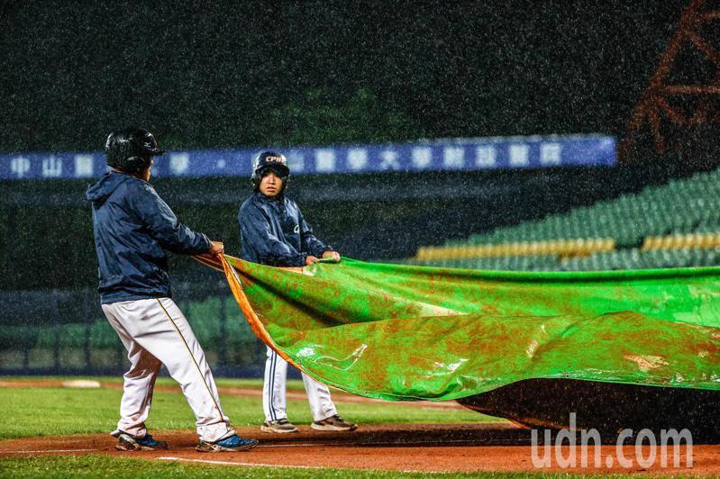 樂天桃猿與中信兄弟在台中洲際棒球場進行中職例行賽,因為雨勢過大,工作人員在球場披上帆布。記者黃仲裕/攝影