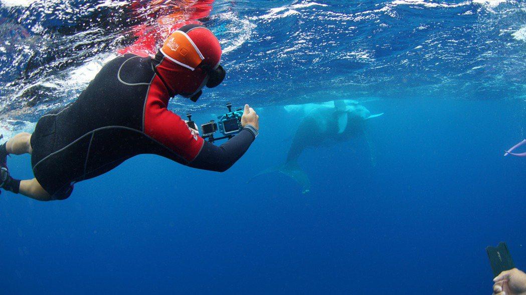 《男人與他的海》黑糖導演黃嘉俊帶著攝影機從陸地航向海洋、再潛入海中。 圖/牽猴子...
