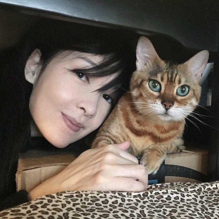▲周慧敏2月時發臉書說,這是與愛貓Cardi的最後一張合照。 圖檔來源/周慧敏臉...