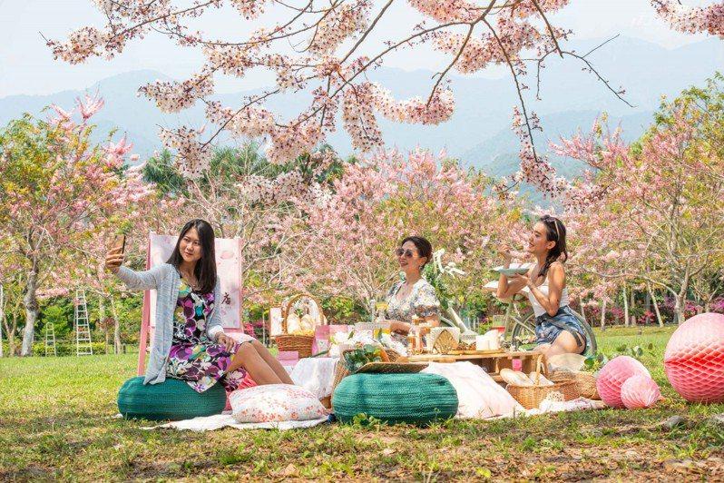 邀請姐妹好朋友一起到粉紅花海之下迎接春天。