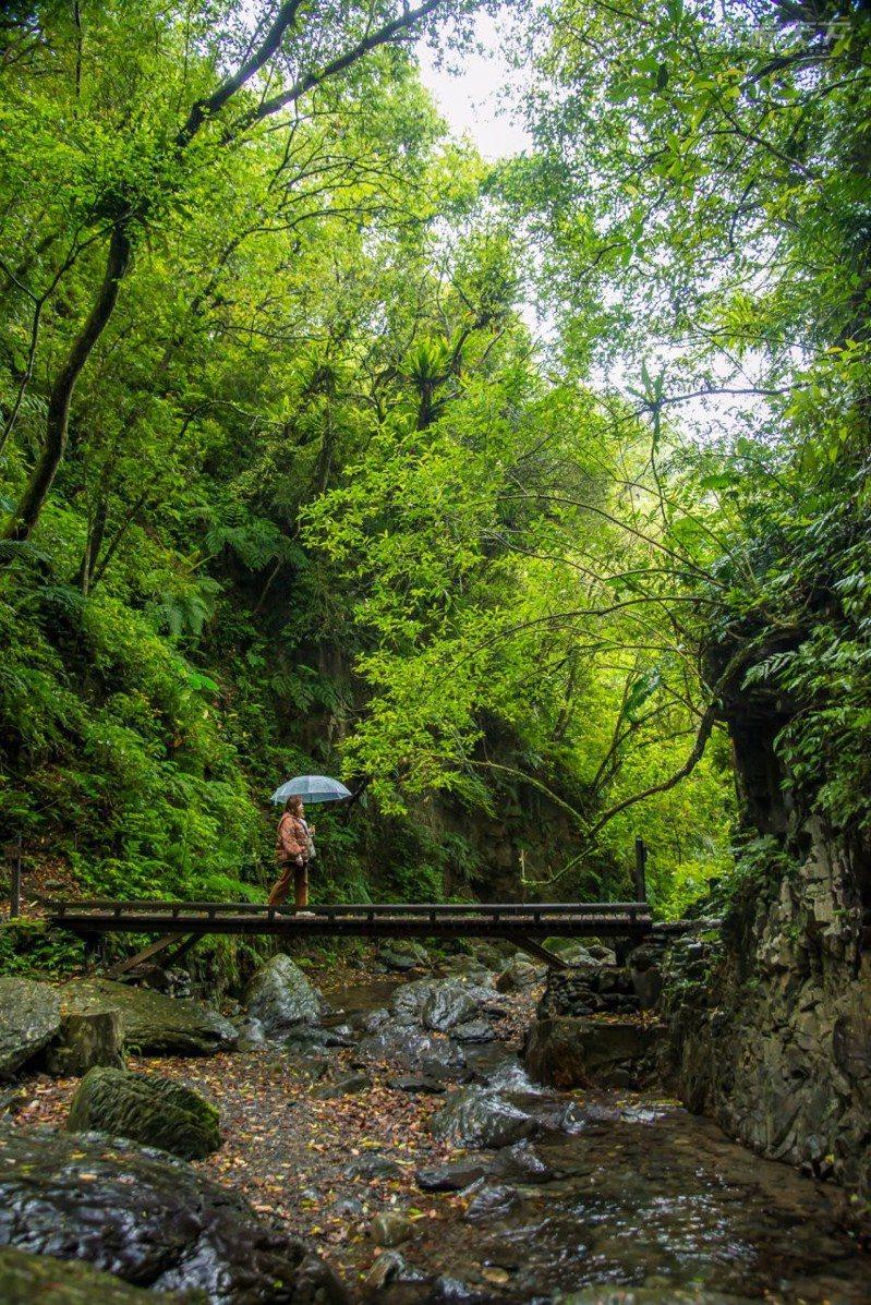 穿梭於仙氣濃郁的石磐步道極為唯美。