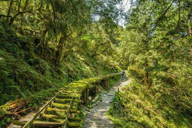 被CNN評選為全球最美28條步道的見晴懷古步道。