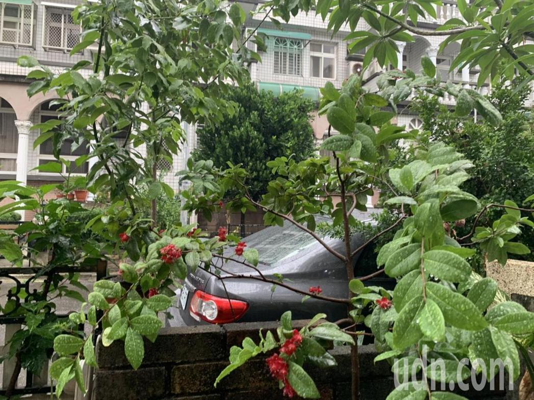 台南清晨5點多不少人被雨聲吵醒。記者吳淑玲/攝影