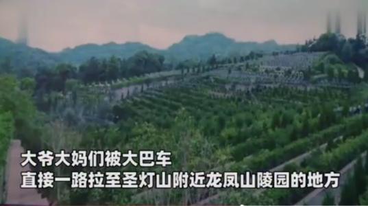 重慶市一家旅行社開出單日遊旅費包吃包交通僅人民幣18元(約新台幣77元),團員開...