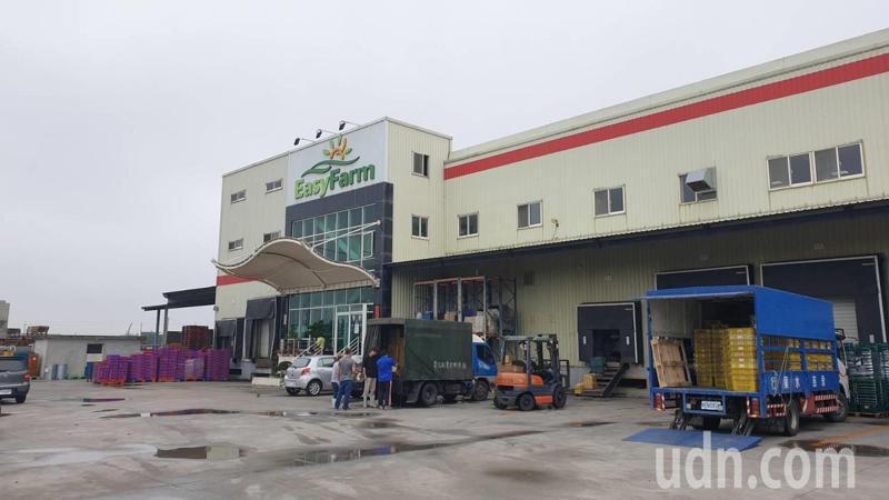 號稱要當「蔬果界台積電」的嘉義縣青松樂活科技農業公司,負責人全家從26日起失聯,積欠員工薪資。本報資料照片