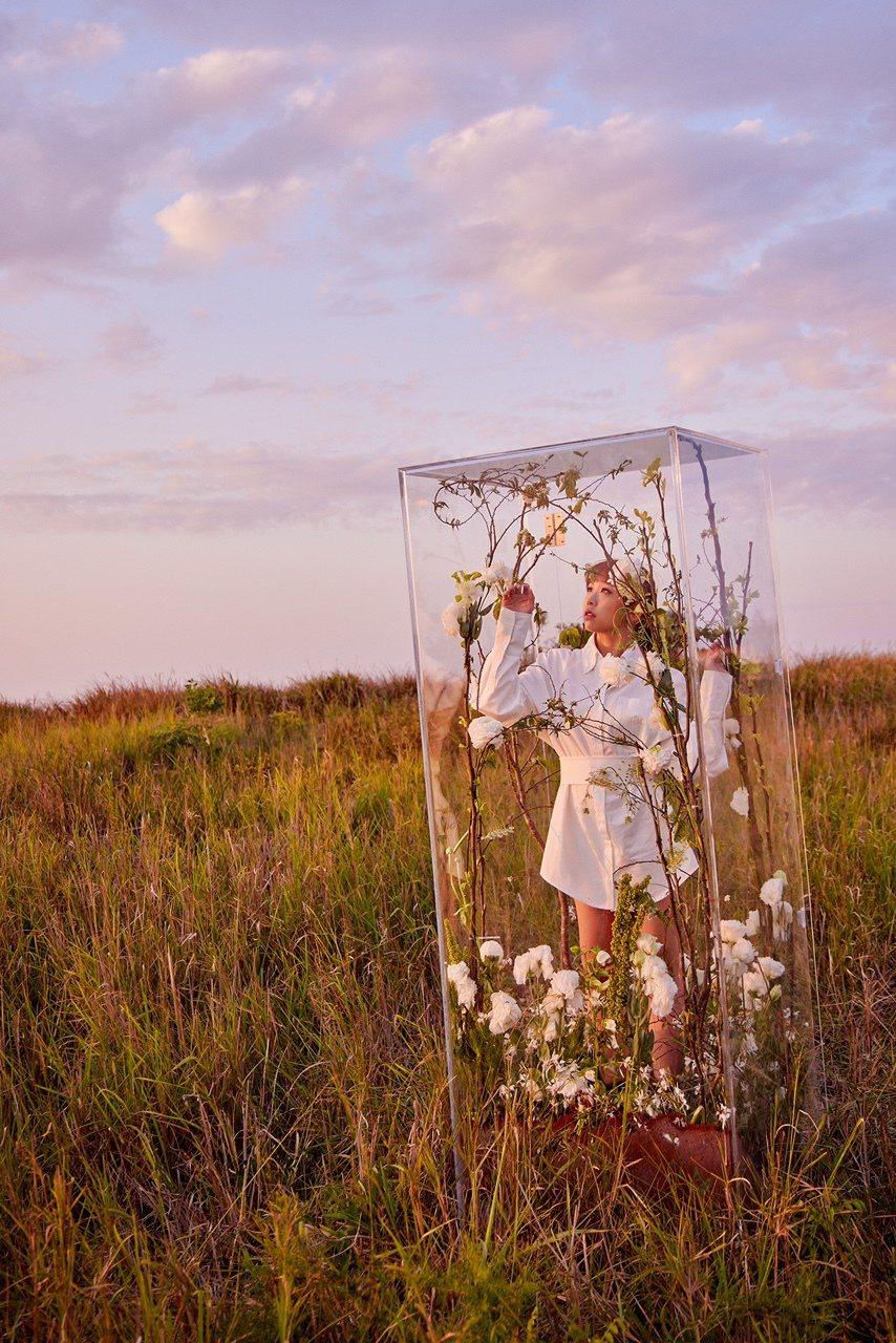 艾薇在鐵砧山⼤草原中搭建的玻璃屋拍攝MV,一度出現輕微「幽閉恐懼症」。圖/環球音...