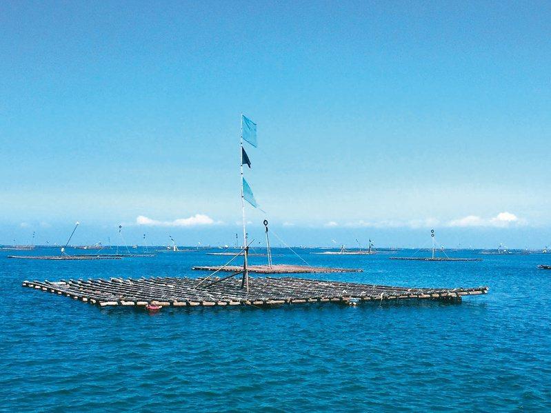 嘉義縣政府公告辦理浮筏式牡蠣養殖環保浮具獎勵補助。圖/嘉義縣府提供