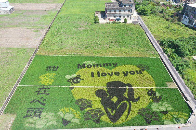 母親節快到了,苗栗縣苑裡鎮農會今年一期作特別設計了「Mommy I love you」的溫馨主題,將甜蜜在心頭的親子圖像呈現在大地。圖/苑裡農會提供