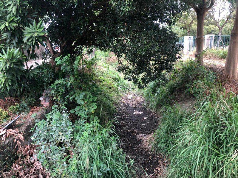 台中市大雅大社支線排水改善施工前。圖/台中市水利局提供