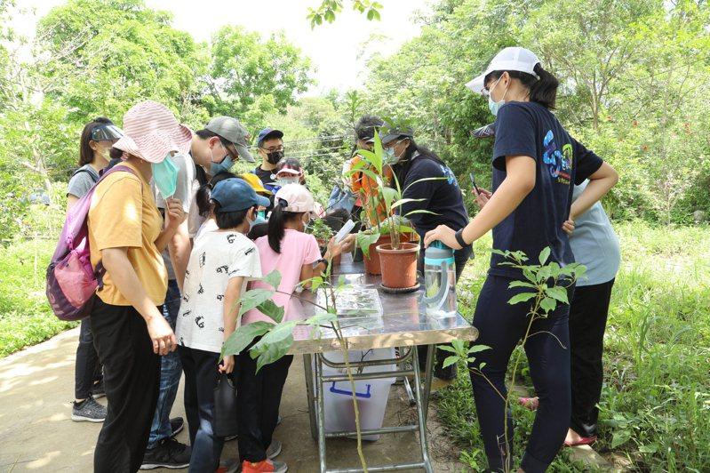 2021大坑蝶螢嘉年華的賞蝶活動今天舉辦。圖/台中市觀旅局提供