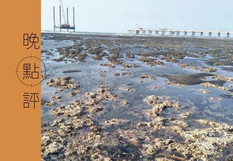 從行政院推出的三階外推方案來看,蔡政府還是沒意識到為何藻礁公投會廣受各界支持與關注。圖/聯合報系資料照片