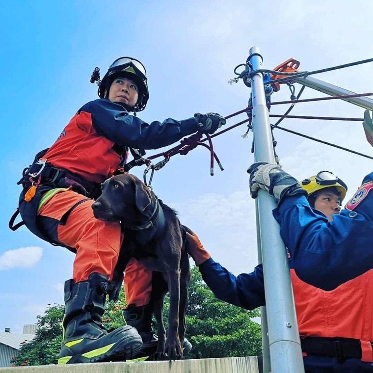 若災區無法直接靠近,領犬員會以垂降方式下放搜救犬到搜索區域。 圖/新北市消防局大...