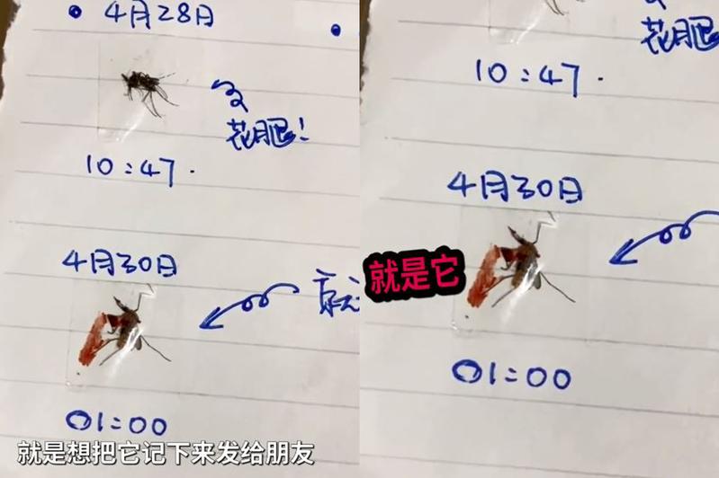 有男網友每晚都被蚊子折磨,怒而製作一本「滅蚊日記」。圖翻攝自微博《長沙政法頻道》