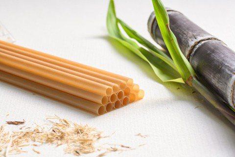吃不了的甘蔗渣、葡萄渣、咖啡渣,「鉅田潔淨」重新設計成餐具。 圖/鉅田潔淨提供