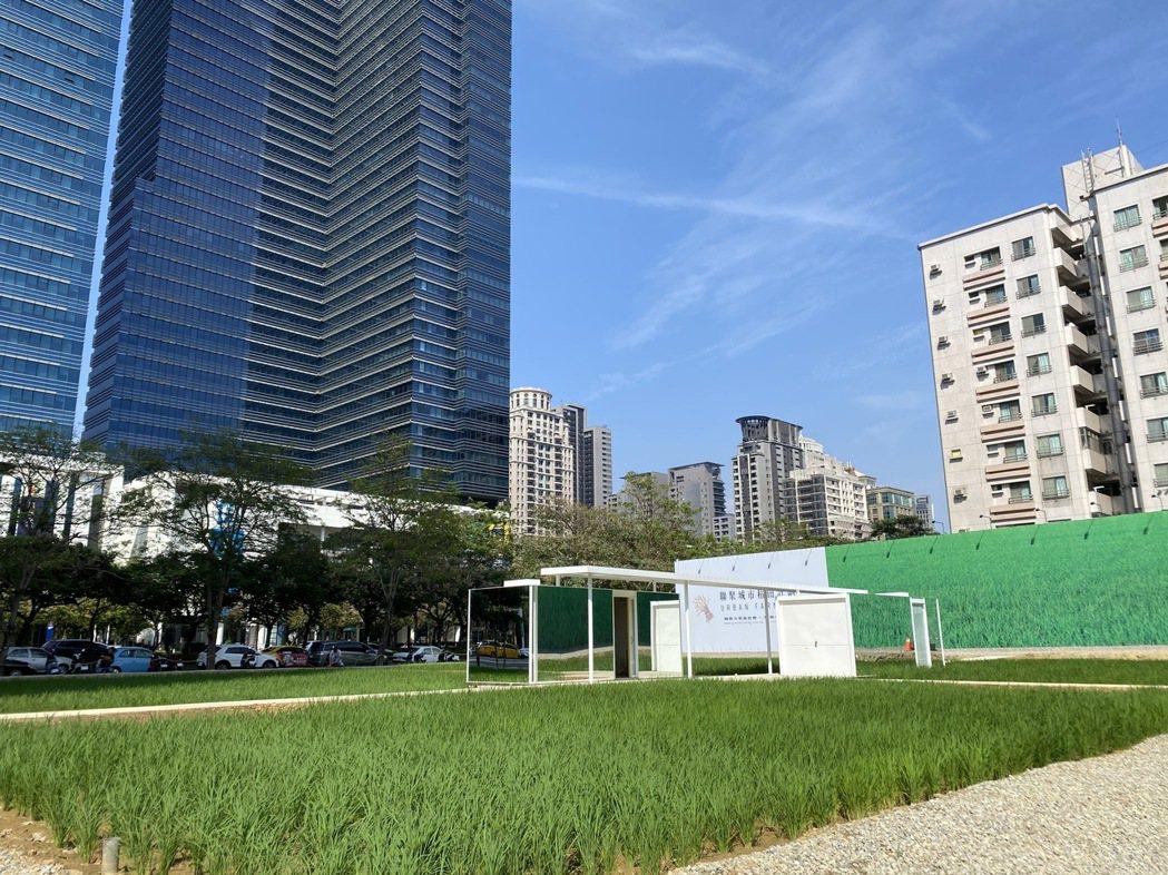 七期最貴稻田由聯聚建設打造,未來將成為豪宅大樓案。圖/業者提供