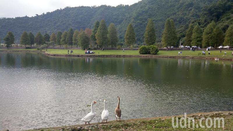 宜蘭員山鄉天然湧泉豐沛,蜊埤湖是遊覽車團客的參觀景點之一。記者戴永華/攝影
